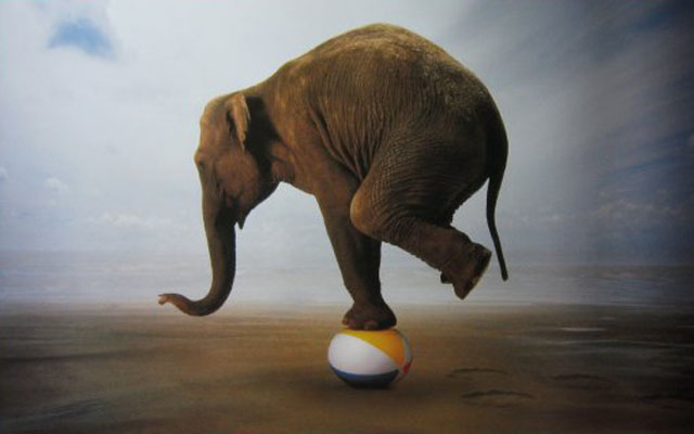 Balance-in-life HC