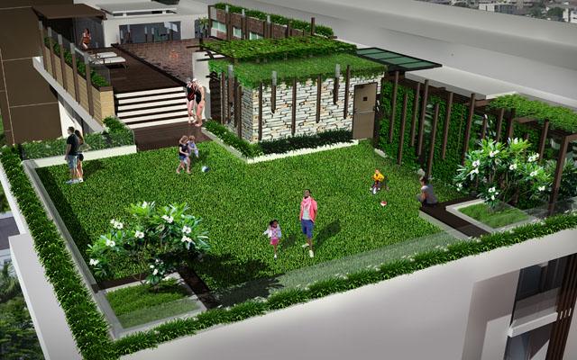 roof garden 12-5-2011