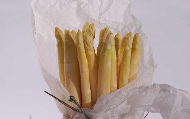 White asparagus-high res
