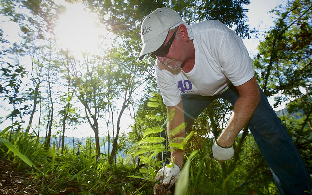 FedEx Employees Plant 400 Trees