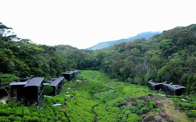 Rainforest Ecolodge