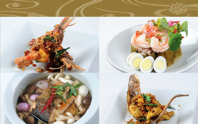 Celadon Authentic Thai Fish and Prawn Dishes Photo
