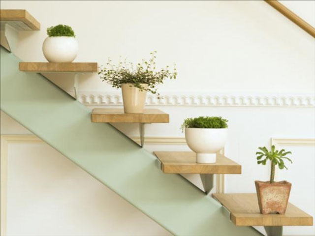 ladder 05