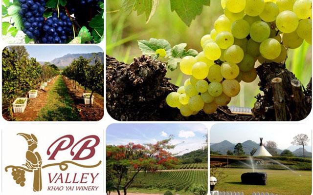 Harvest Activity 2014