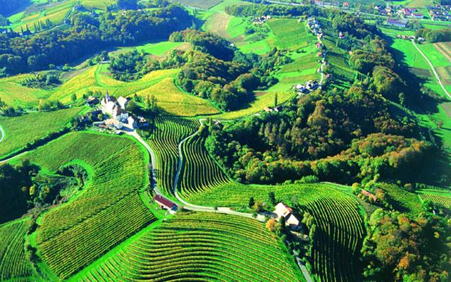 wine_road