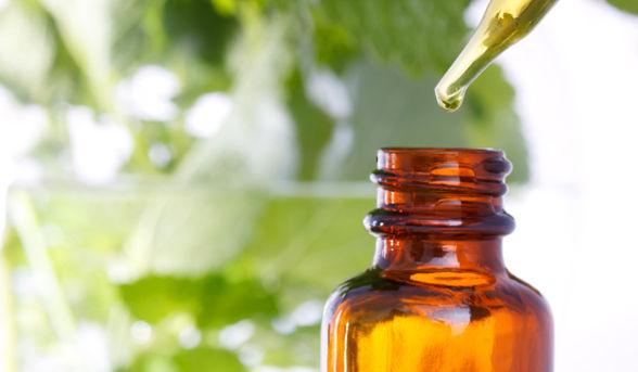 serum-leaves_article_new