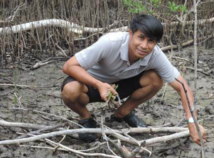 Mangrove planting 1