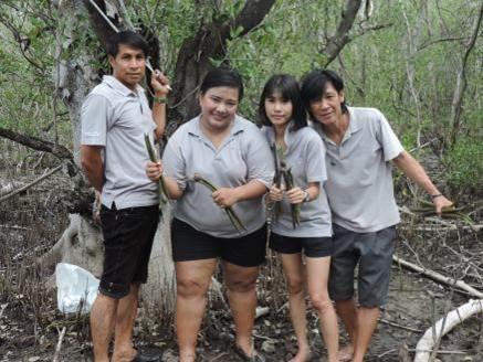 Mangrove planting 2