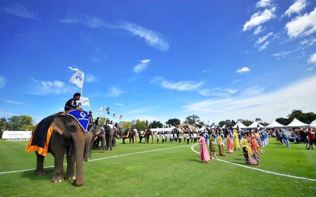 Elephant Polo 2013