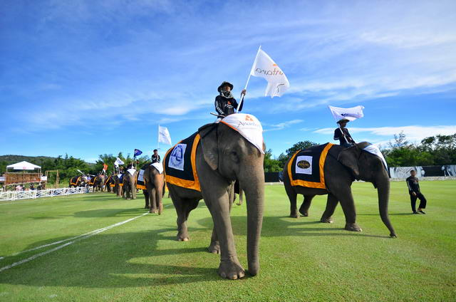 Elephant-parade-during-Kings-Cup-Elephant-Polo-2013