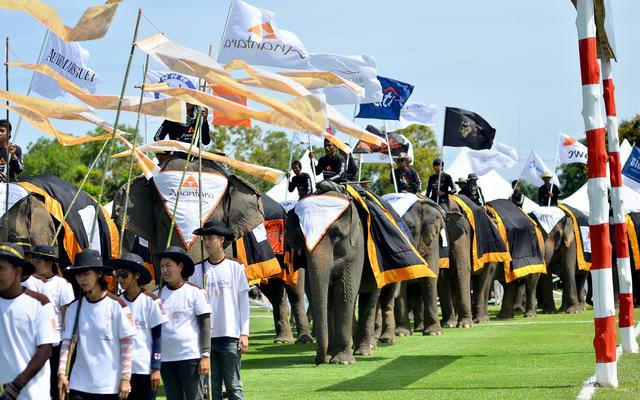 ElephantPolo2013_004