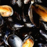 French Bouchot Mussels at Wine Pub