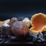 The French Wild Mushrooms at Wine Pub