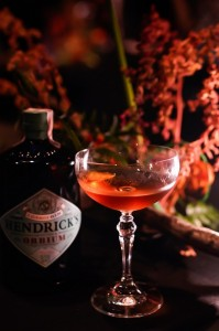 Hendrick_s Orbium - 4