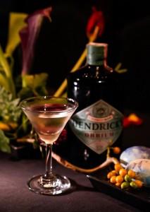 Hendrick_s Orbium - 5